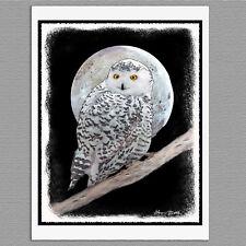 6 Snowy Owl Bird Original Handmade Blank Art Note Greeting Cards