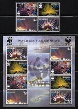 MICRONESIA, Scott # 659 & 659A, SET OF BLOCK & MINI SHEET WWF NATURE,MARINE LIFE