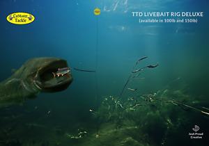 T.T.D Live Bait Rig Deluxe 4/0 Eagle Wave Hook BLACK 150lb Mono