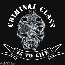 CRIMINAL CLASS 25 to life CD new and in stock fighting the system oi skinhead