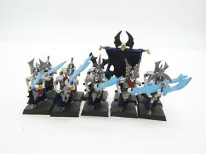 (4115) Grave Guard Regiment Soulblight Gravelords Age Of Sigmar Fantasy