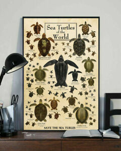 Sea Turtles of The World Home Decor Wall Art Poster