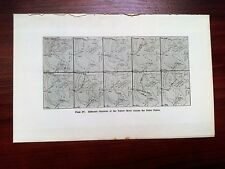 1915 Map China Different Channels of Yellow River across Delta Plains