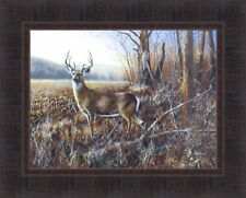BLUFF COUNTRY BUCK by Jim Hansel 17x21 Whitetail Deer Woods FRAMED PRINT PICTURE