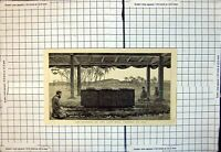 Original Old Antique Print Funeral Late King Cacobau Fiji 1883 19th