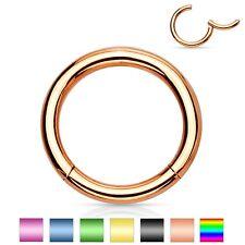 2 lot Titanium Segment Captive Rings Ear Cartilage Rook Nose Nipple Lip Piercing