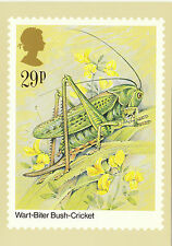 PHQ 82 C - INSECTS - POST OFFICE POSTCARD - INSECTS - WART  BITER  BUSH  CRICKET