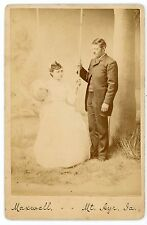 Formal studio setup - woman swing painted backdrop  vintage cabinet card photo