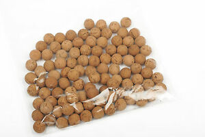 CORK BALLS FOR POP UPS, VARIOUS SIZES AVAILABLE