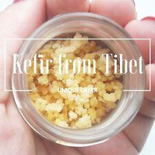 Deshidratado (seco) tibetano setas Leche Kéfir granos de yoguis FREEPOST del Tíbet