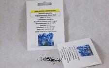 Vergißmeinnicht Blauer Ball Myosothis alpestris Samen Saatgut Profiqualität
