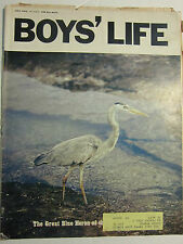 BOYS LIFE MAGAZINE July 1970 The Great Blue Heron of the Galapagos  VINTAGE