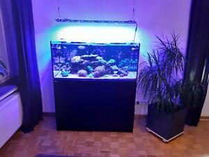 Meerwasseraquarium komplett Red Sea Reefer 350