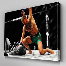 S567 Conor McGregor UFC 194 Aldo KO Pound Canvas Art Framed Poster Prints