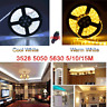 5M/10M/15M 300 SMD 3528/5050/5630 LED Strip Light /Bianca/Fredda/ Striscia Luce