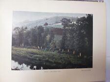 SUISSE BRETONNE/ Gravure 19° in folio couleur /SAINT-HERBOR : L'ELEZ