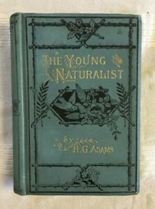 The Young Naturalist by H. G. Adams (1879 Antique Hardcover Edition)