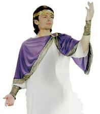 Caesar Roman Ancient Greek Costume Adult Mens Fancy Dress Outfit Cosplay
