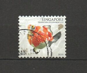 SINGAPORE 2020 GOLDFISH 1ST LOCAL TELESCOPE EYE PEARLSCALE 1ST RP 2020B IN USED