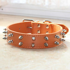 Medium Large Breed 2 Rows Spiked Studded Leather Dog Collar for Pit Bull Terrier