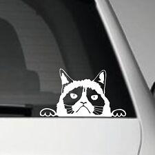 GRUMPY CAT PEEPER JDM VINYL ADHESIVE CAR DECAL STICKER JDM VW EURO DUB SCENE