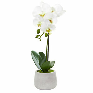 Phalaenopsis Orchid Artificial Arrangement Nearly Natural 2 Pcs Home Decor
