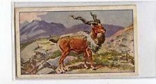 (Jb3111-100)  SNIDERS & ABRAHAM,ANIMALS GREEN,MARKOR,1912#