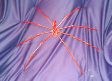 Halloween Spider Metal Sculpture Red Spider Hand Made From NAILS