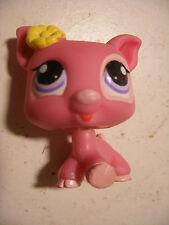 Hasbro Littlest PetShop PET SHOP #1550 Cochon
