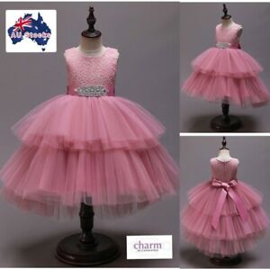 Flower Girl Princess Pageant Party Christmas Wedding formal pink lace tutu dress