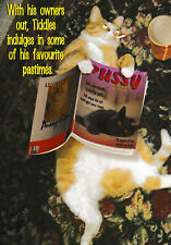 Pastimes - Funny Humour Card - L ~ FREE POSTAGE UK