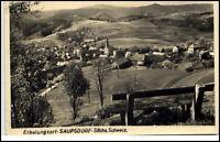 Saupsdorf Sachsen DDR Postkarte 1959 Panorama Dorf Bank Bäume Wiesen Felder