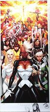 MARK BROOKS X-MEN DOOR ART PRINT POSTER PSYLOCKE REMARKED SKETCH STORM JEAN GREY