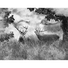 VLIES Fototapeten Tapete Nebel Hirsch Wald Tier Natur Baum Foto Bild 3FX10033VEA