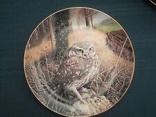 Little Owl collector plate Watchful Eyes Trevor Boyer Owls Danbury Mint