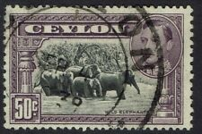 CEYLON 1938 KGVI ELEPHANTS 50C PERF 13 X 11.5 USED