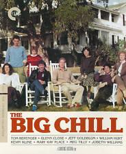 The Big Chill (Blu-ray/DVD, 2014) VG#