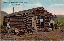 (13wz) Postcard: A Western Bachelor's Home, Wife Wanted