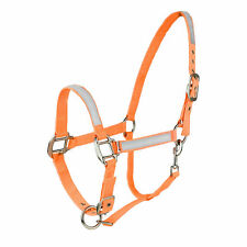 Horze Neon Orange Safety Reflective Full Average Horse Pasture Trail Halter