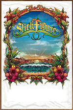 STICK FIGURE Above The Storm 2018 Tour Ltd Ed RARE New Poster +FREE Punk Poster!