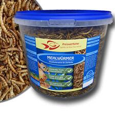 Getrocknete Mehlwürmer 3L Eimer 540 g Futter Fische Reptilien Schildkröten
