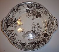 Antique Francis Morley Sydenham Biscuit Plate 1860 Brown Transfer Aesthetic