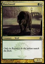 1x Watchwolf Ravnica MtG Magic Gold Uncommon 1 x1 Card Cards