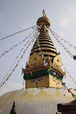 1x Gebetsfahne - Tibetan Prayer Flag - neu - 25 Fahnen je 17cm x 12cm - 5m lang