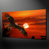 FLYING EAGLE SUNSET CANVAS PRINT PICTURE WALL ART HOME DECOR FREE FAST DELIVERY