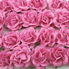 25 Mulberry Paper Flowers Wedding Rose Headpiece Scrapbook Craft Supply R77-3