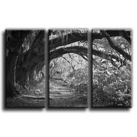 Floral Woodland Landscape Canvas Art Print Triptych Treble Box Framed Picture 35