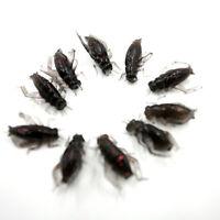 10pcs/Bag Cricket Fishing Lures Black Soft Insect Artificial Bait、SE
