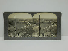Keystone Stereoview #T142 Desert Cactus Salt River Valley, Arizona 13724