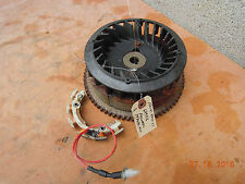BRIGGS AND STRATTON SNOW ENGINE FLYWHEEL AND STATOR